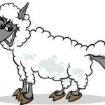Loup déguisé en mouton